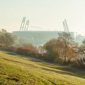 Weserstadion mit Morgennebel, Bremen von Torsten Krüger