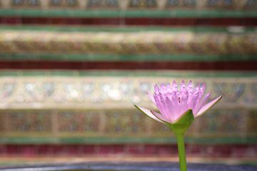 Lelie in Wat Phra Kaew von Marcia Dubbelaar