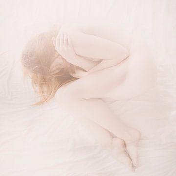 schlafende Schönheit von Arjan van Limbeek