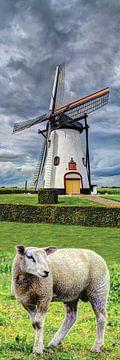 Mühle mit Lamm von Hendrik-Jan Kornelis