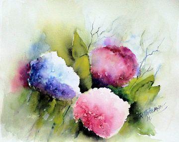 Hortensia's van Rita Tielemans