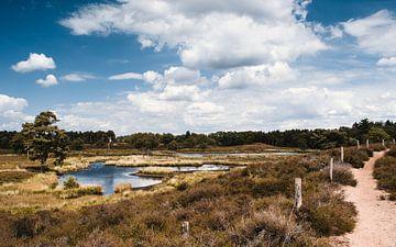 Hatertse en Overasseltse Vennen, schöner Panoramablick von Rob van Dongen