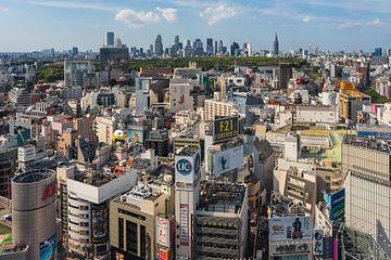 TOKYO 33 sur