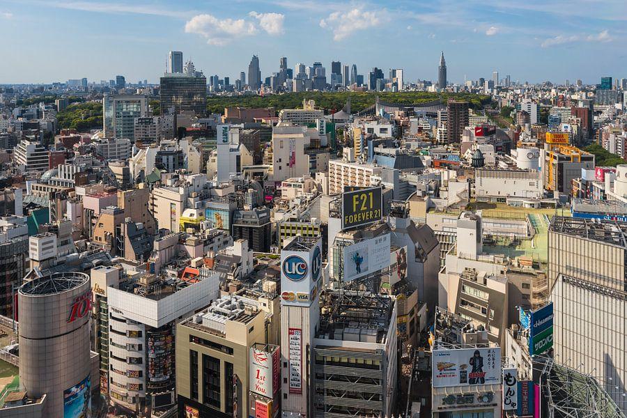TOKYO 33