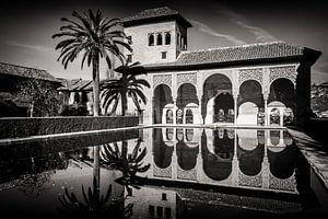 Granada - Alhambra / Torre de las Damas van Alexander Voss