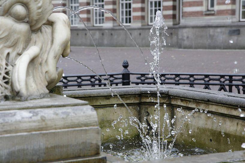 Visfontein Leiden van Carel van der Lippe