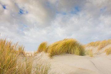 Strand en duinen van Schiermonnikoog van