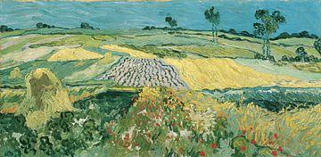 Die Ebene von Auvers, Vincent van Gogh von