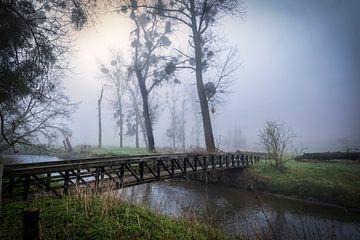 misty morning van anouk smit
