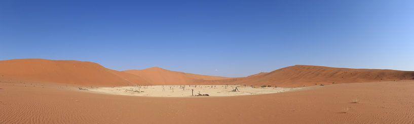 Panorama Sossusvlei, Namibië van Denise Wit