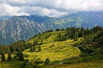 Uitzicht van Alpe Schlappold naar de Allgäu Hoofdrug van Gisela Scheffbuch