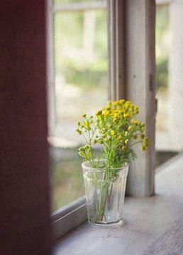 op de vensterbank van Sagolik Photography