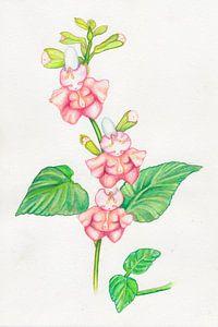 Bloemen popjes en baby knopjes  van Anouk Maria van Deursen