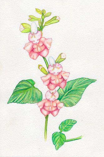 Bloemen popjes en baby knopjes