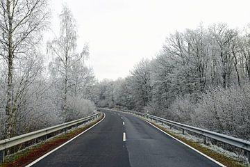 Gefrorener Frost auf den Bäumen entlang des Weges von Renzo de Jonge