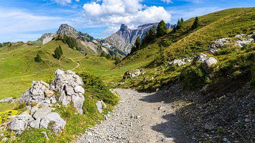 Wandelpad in Schynige Platte in Zwitserland