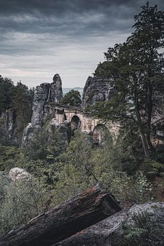 Bastei-brug van Sebastian Witt
