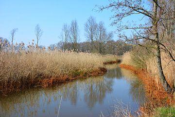 Winterlandschaft Groote Beerze Nord-Brabant von My Footprints
