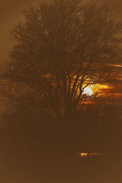 zonsondergang II van Monique crandel