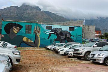 Streetart Woodstock Kaapstad van Marieke Funke