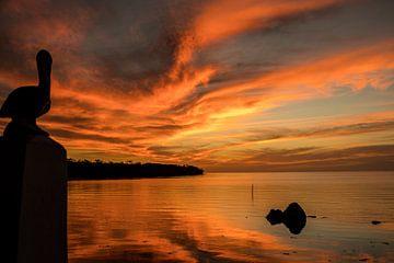 Avondopname van de zonsondergang in Florida Keys van Ineke Huizing
