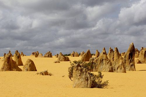 Pinnacles desert landschap, Australia