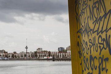 Rauw Rotterdam van Onno Alblas