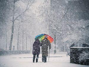 Regenschirm im Schnee in Nimwegen von Rutger van Loo