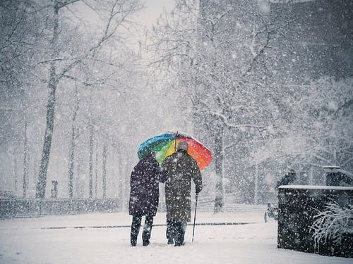 Paraplu in de sneeuw in Nijmegen