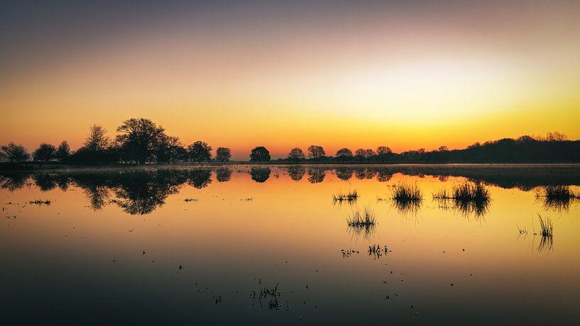 Kloosterveld bei Sonnenaufgang von Anneke Hooijer