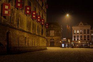 De waag en het stadhuis van Gouda in de sneeuw van