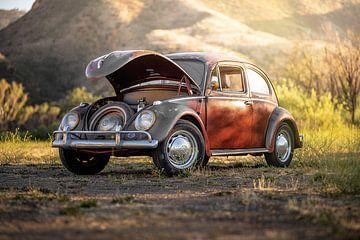 Bad Painting Volkswagen van Truckpowerr