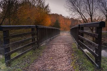 Bij de brug in Allerpark in de herfst van Marc-Sven Kirsch
