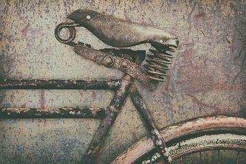 Das alte, verrostete Cargo-Bike. von