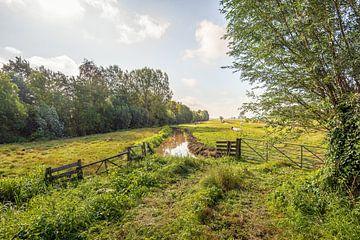 Typische niederländische Polderlandschaft von Ruud Morijn