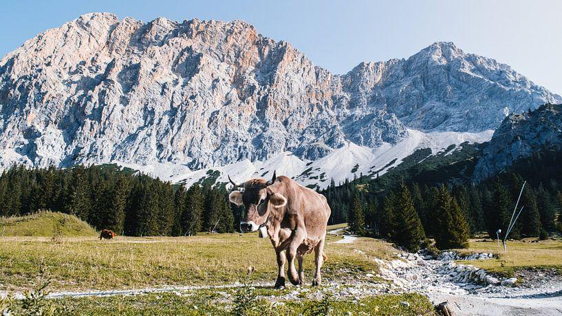Uitzicht bergen (Alpen, Zugspitze Arena Tirol) van Rob van Dongen