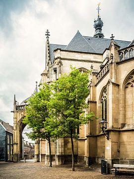 Eingang st Stevenskerk von Lex Schulte