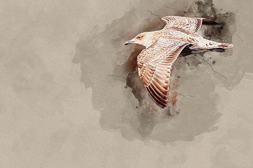 Vliegende jonge zilvermeeuw