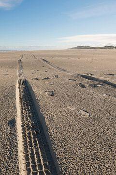 Sporen in het strand van Tonko Oosterink
