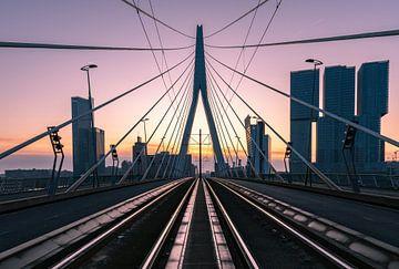 Le pont Erasmus, Rotterdam sur Arisca van 't Hof