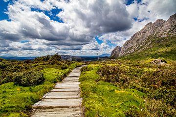 Märchenwanderweg auf Tasmanien von Eveline Dekkers