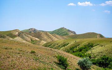 Georgie Wüste von Stijn Cleynhens