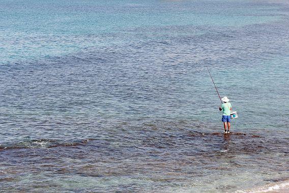 Sea of ??Galilee, Israel van Ronald Jansen