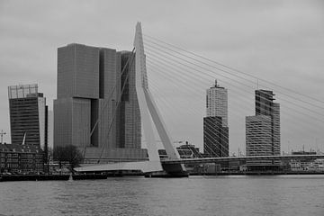 Rotterdam - Erasmusbrug en omgeving - in zwart-wit van Ineke Duijzer
