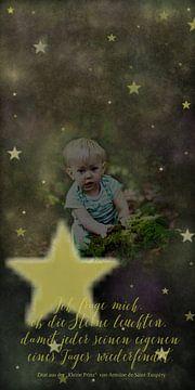 De Kleine Prins - ik vraag me af ..... van Christine Nöhmeier