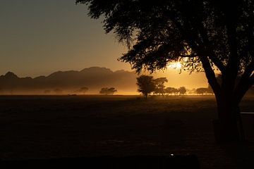 Sonnenaufgang in der Wüste Namibias von GoWildGoNaturepictures