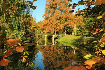 Herfst in de Slangenburg van Martien Wassink