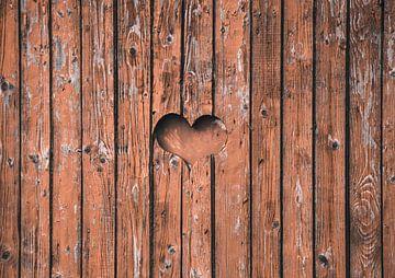 Liefde is overal! van Nynke Nicolai