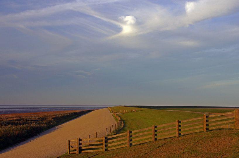 Dijk  Waddenzee Friesland van Watze D. de Haan