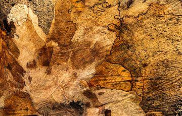 grains de bois sur Corrie Ruijer
